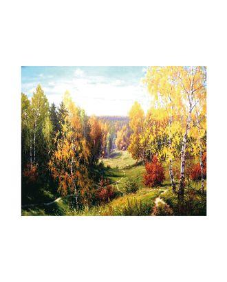 Картины по номерам Molly Прищепа. Бабье лето (24 цвета) 40х50 см арт. МГ-97792-1-МГ0931700