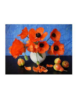 Картина по номерам с цветной схемой на холсте Molly Красные маки (18 цветов) 30х40 см арт. МГ-101223-1-МГ0947805