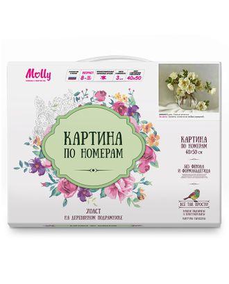 Картины по номерам Molly Бузин. Белые розочки (24 цветов) 40х50 см арт. МГ-104167-1-МГ0950056