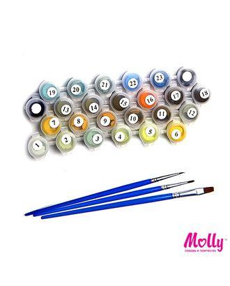 Картины по номерам Molly Райский уголок (20 цветов) 30х30 см арт. МГ-104210-1-МГ0951382