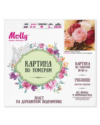 Картины по номерам Molly Оттенки розового (20 цветов) 30х30 см арт. МГ-104169-1-МГ0951383