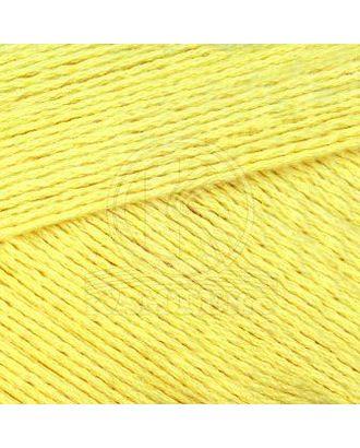 """Пряжа для вязания КАМТ """"Ананасовая"""" (55% ананасовое волокно, 45% хлопок) 5х100г/250м цв.031 шамп арт. МГ-105944-1-МГ0951475"""
