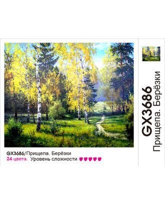 Картины по номерам Molly Прищепа. Березки (24 цвета) 40х50 см арт. МГ-102871-1-МГ0953509