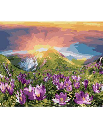 Картины по номерам Molly Восход (28 цветов) 40х50 см арт. МГ-104279-1-МГ0953517