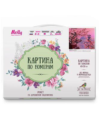 Картины по номерам Molly Фудзияма (28 цветов) 40х50 см арт. МГ-104301-1-МГ0953519