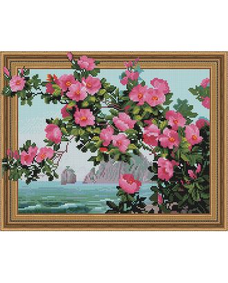 "Набор ""Колор Кит"" картина алмазная Цветы и море 40х50 арт. МГ-104516-1-МГ0956488"