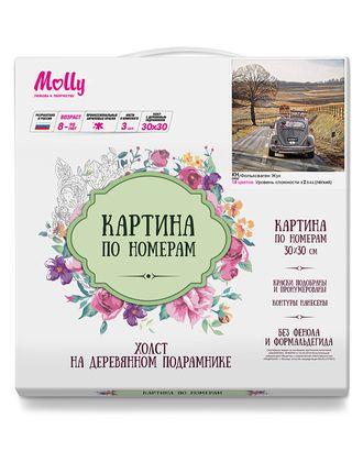 Картины по номерам Molly Фольксваген жук 30х30 см арт. МГ-104573-1-МГ0956768