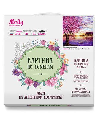 Картины по номерам Molly Сиреневый пейзаж 30х30 см арт. МГ-104551-1-МГ0956772