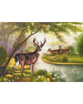 Алмазная мозаика Ah5412 Лесная сказка 50х70 арт. МГ-106040-1-МГ0957828