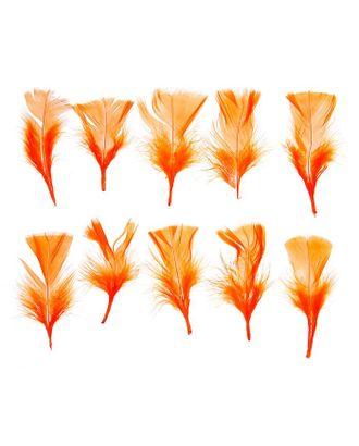 Набор перьев для декора 10шт, р.1шт 10х4 арт. СМЛ-22487-2-СМЛ1040751