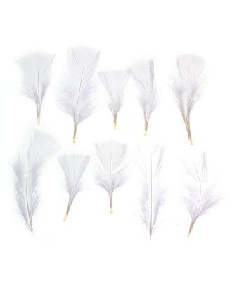 Набор перьев для декора 10шт, р.1шт 10х4 арт. СМЛ-22487-5-СМЛ1040796