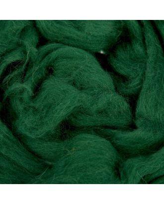 Шерсть для валяния (110 тёмно-зелёный) арт. СМЛ-20363-8-СМЛ1181841
