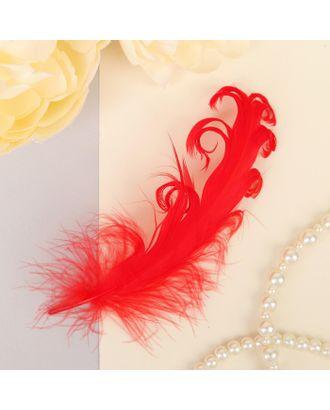 Набор перьев для декора 8шт, р.1шт 13,5х2 арт. СМЛ-23819-2-СМЛ3307369