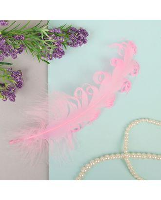 Набор перьев для декора 8шт, р.1шт 13,5х2 арт. СМЛ-23819-5-СМЛ3307370