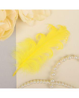 Набор перьев для декора 8шт, р.1шт 13,5х2 арт. СМЛ-23819-4-СМЛ3307372
