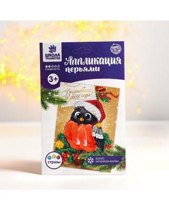 Новогодняя аппликация перьями и стразами «Снегирь» арт. СМЛ-120886-1-СМЛ0003427915