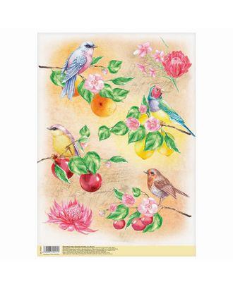 Декупажная карта «Райские птицы», 21х29,7 см арт. СМЛ-10160-1-СМЛ3429418