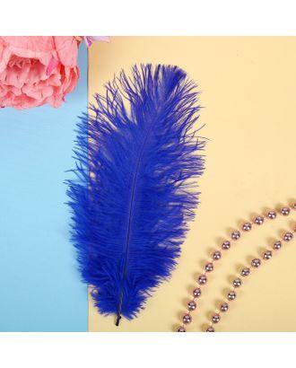 Перо для декора, размер 24см арт. СМЛ-23818-8-СМЛ3496263