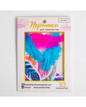 Перышки для творчества «Вдохновение цветом», 10,3х14,3см арт. СМЛ-12101-1-СМЛ3587426