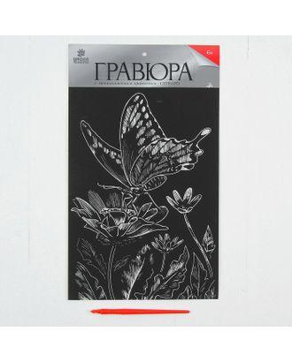 """Гравюра на подложке """"Бабочка на цветке"""" с металлическим эффектом серебра А4 арт. СМЛ-13704-1-СМЛ3693210"""