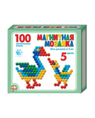 Мозаика магнитная шестигранная, 5 цветов, 100 элементов арт. СМЛ-13815-1-СМЛ3699791