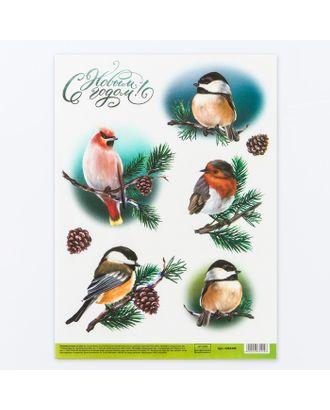 Декупажная карта «Птицы», 21х29,7 см арт. СМЛ-15402-1-СМЛ3877951