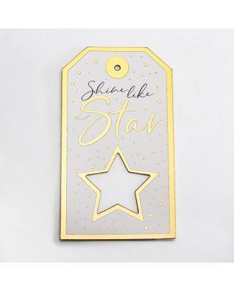 Шильдик «Звезда», 10,5 х 19 см арт. СМЛ-17378-1-СМЛ3993849