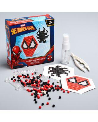 Аквамозаика, Человек-паук арт. СМЛ-18645-1-СМЛ4060988