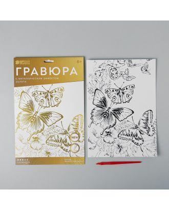 """Гравюра """"Полет бабочек"""" A4, с металлическим золотым эффектом арт. СМЛ-19458-1-СМЛ4110946"""