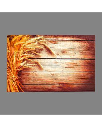 """Фотофон винил """"Пшеница и доски"""" 80х125 см арт. СМЛ-113175-1-СМЛ0005200194"""