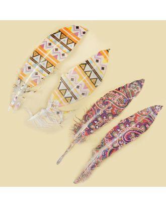 Набор перьев для декора 2 шт. «Орнамент», МИКС арт. СМЛ-39212-1-СМЛ0005221822