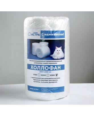 Рулончики для одеял холлофан 2х2м Х300 арт. СМЛ-111676-1-СМЛ0005306019