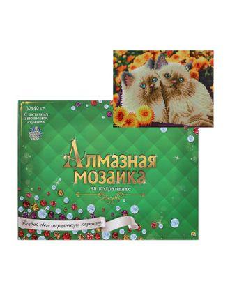Алмазная мозаика блестящая 30х40 см, с подрамником, с частичным заполнением, 26 цветов «Серые котята в корзине» арт. СМЛ-122834-1-СМЛ0005441752