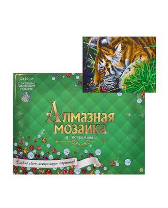 Алмазная мозаика блестящая 30х40 см, с подрамником, с частичным заполнением, 20 цветов «Тигр у ручья» арт. СМЛ-122835-1-СМЛ0005441753