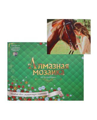 Алмазная мозаика блестящая 40х50 см, с частичным заполнением, 24 цветов «Прекрасная девушка и лошадь» арт. СМЛ-122841-1-СМЛ0005441759