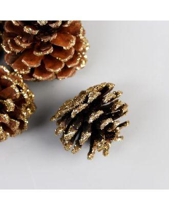Набор декоративных шишек 100 гр арт. СМЛ-124134-1-СМЛ0005445373